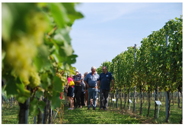 Knowledge and research centre viniculture