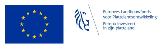 Vlaamse overheid en Europa