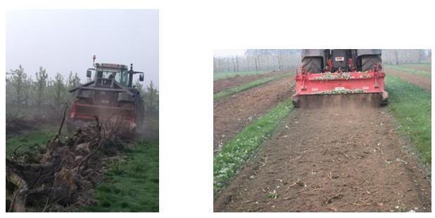 Koolstofcirkels in Haspengouwse land- en tuinbouw