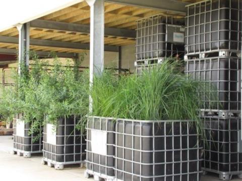 Workshops biofilter bouwen