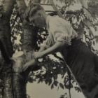 75 jaar fruitonderzoek