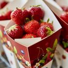 Zomertour Carry a Berry®