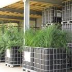 UITGESTELD! - Workshops biofilter bouwen